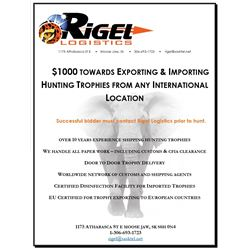 $1000 Credit for importing/exporting  services with Rigel Logistics