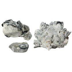 Large clump of 25+ silver cobs encrusted onto a ballast stone, plus smaller stone with single coin,