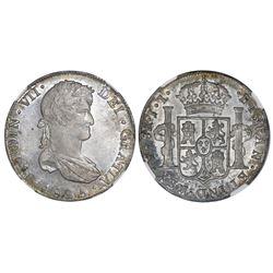 Potosi, Bolivia, bust 8 reales, Ferdinand VII, 1825JL, NGC AU 55.