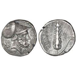 Lucania, Metapontum, AR nomos, 334-330 BC.
