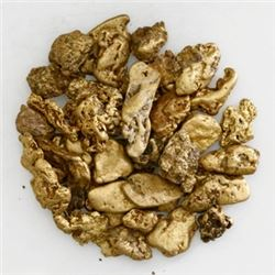 Lot of forty-two gold (~22k) nuggets, 30 grams total, from the Dominican Republic.