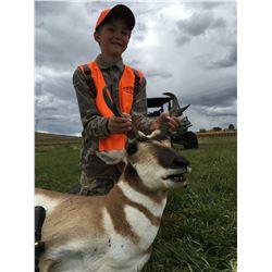 Colorado Pronghorn Hunt for 1 Hunter