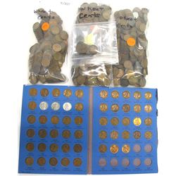 Large Group of Wheat Cents