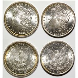 Two Gem Morgan Dollars