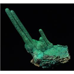 Malachite from Mashanba West Mine, Democratic Republic of Congo
