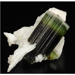 Elbaite from Pakistan