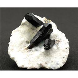 Neptunite from Benitoite Gem Mine, San Benito County, California
