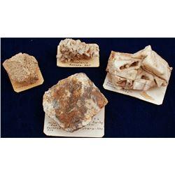 Aurora Gold and Geologic Specimens