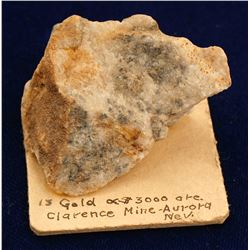Clarence Mine Gold Specimen
