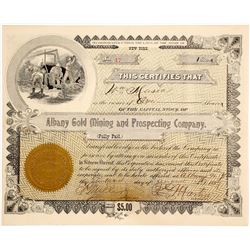 Albany Gold Mining & Prospecting Co. Stock Certificate