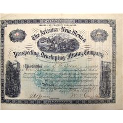 Arizona & New Mexico Prospecting, Developing & Mining Co. Stock Certificate