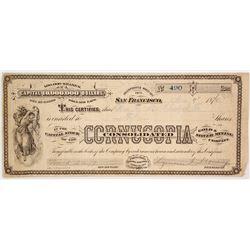 Cornucopia Consolidated Stock Certificate