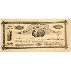 Silver Peak Tunnel & Mining Co. Stock Certificate