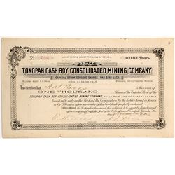 Tonopah Cash Boy Consolidated Mining Co. Stock Certificate