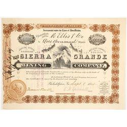 Sierra Grande Mining Company Stock Certificate