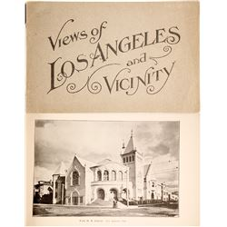 View of Los Angeles and Vicinity Photo Book