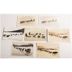 Dogsled Postcards: Mail Teams