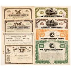 Arizona Mining Stock Certs. (8)