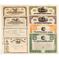 Arizona Mining Stock Certs. (8)