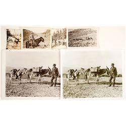 Prospector Photographs
