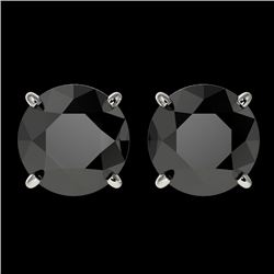 3.18 CTW Fancy Black VS Diamond Solitaire Stud Earrings 10K White Gold - REF-66H8A - 36697