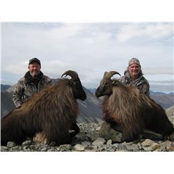 5-Day/4-Night Free-Range Tahr Hunt on foot for 1 in New Zealand