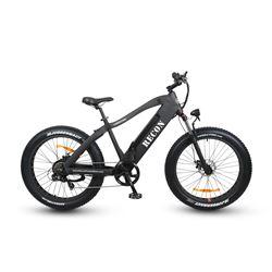 RECON Power Bike - Commando Power Cruzer with 750 watt motor, 48 volt lithium ion battery