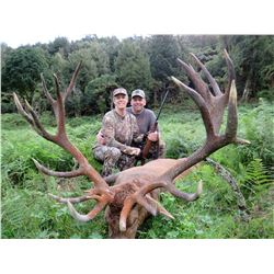 Red Stag Hunt for 1 and $1,000 credit towards an optional Rusa Stag, 5 days/4 nights in New Zealand