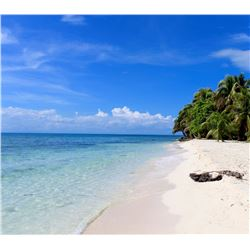 Belize Island Fishing and Diving for 2 people with Blue Reef Adventures