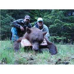 6-Day Idaho Black Bear hunt for 2 hunters