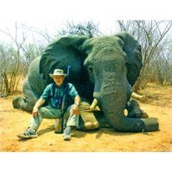 5-Day Bull Elephant for One Hunter