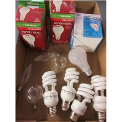 Flat full of New Lightbulbs