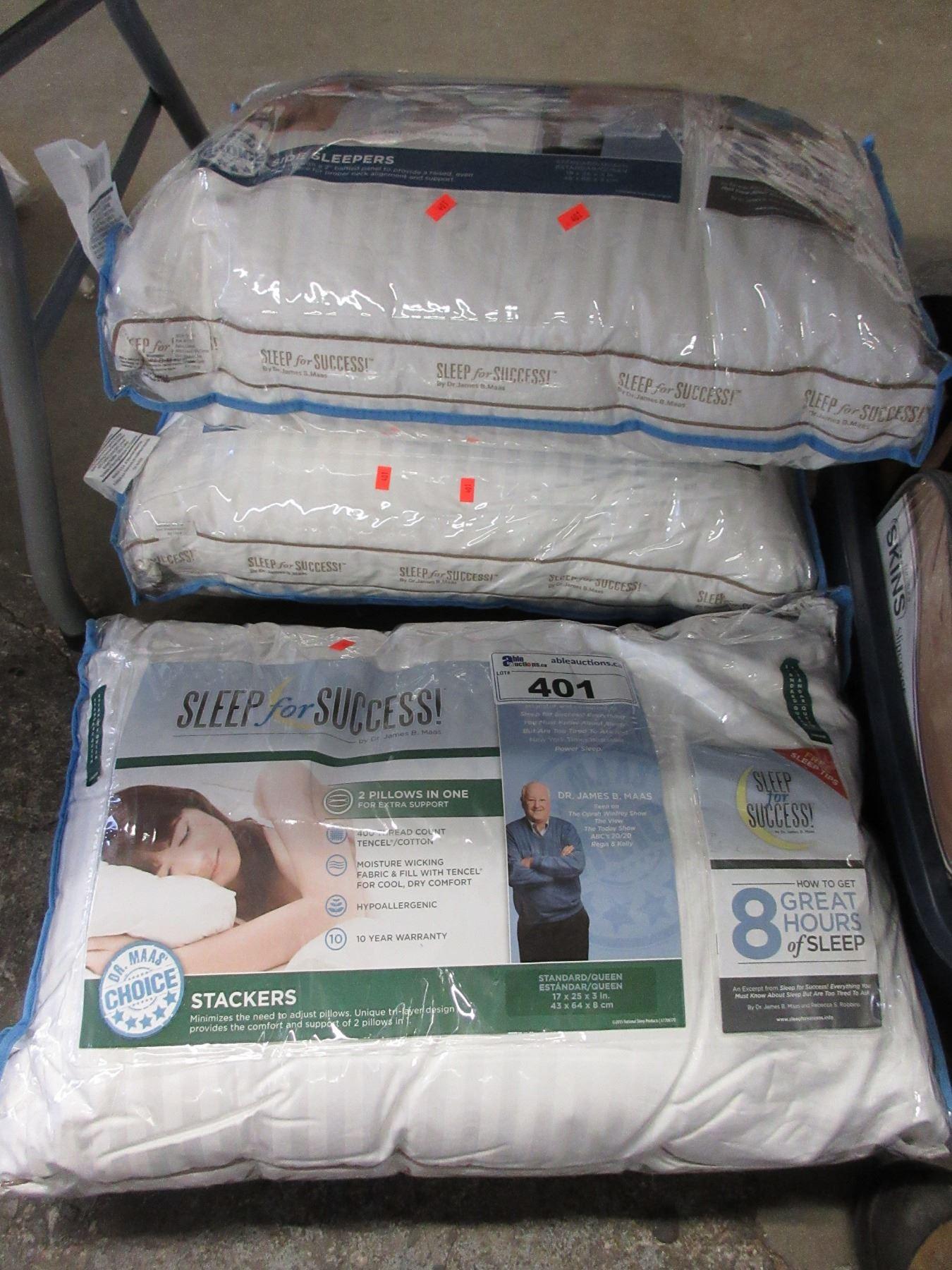 3 Sleep For Success Sq Pillows