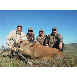#WED-04 Wild Boar Hunt, California