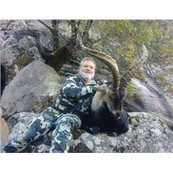 #WED-12 Southeastern or Ronda Ibex Hunt, Spain