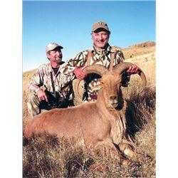 #FB-16 Aoudad Sheep Hunt, Texas
