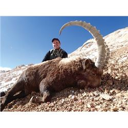 #FB-18 Hunter's Choice Ibex
