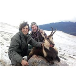 #THD-12 Pyrenean Chamois Hunt, Spain