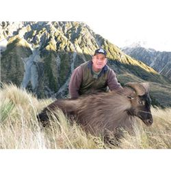 #THD-16 Free-Range Chamois and Tahr Hunt, New Zealand