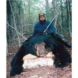 #FR-10 Black Bear Hunt, Alaska