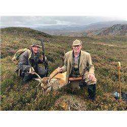 #FR-12 Red Stag Hunt, Scotland