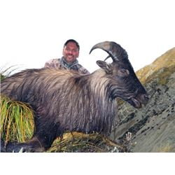 #FR-19 Tahr Hunt, New Zealand