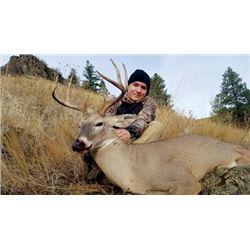 #FR-28 Archery Combo Hunt for Mule Deer, Whitetail, Rocky Mountain Elk and Black Bear, Idaho