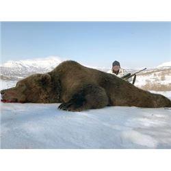 #FR-29 Brown Bear Hunt, Kamchatka Peninsula