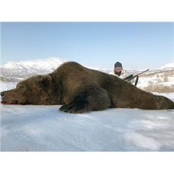 #FR-29 Brown Bear Hunt, Kamchatka Peninsula
