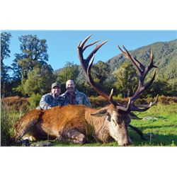 #SA-05 Red Stag Hunt, New Zealand