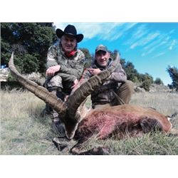 #SA-07 Beceite Ibex Hunt for TWO Hunters, Spain