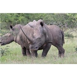 #SA-09 Vita-Darted Rhino Safari, South Africa