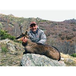#SA-12 Pyrenean Chamois and Iberian Mouflon Hunt, Spain