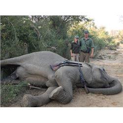 #SA-26 Big Game Safari, Zimbabwe
